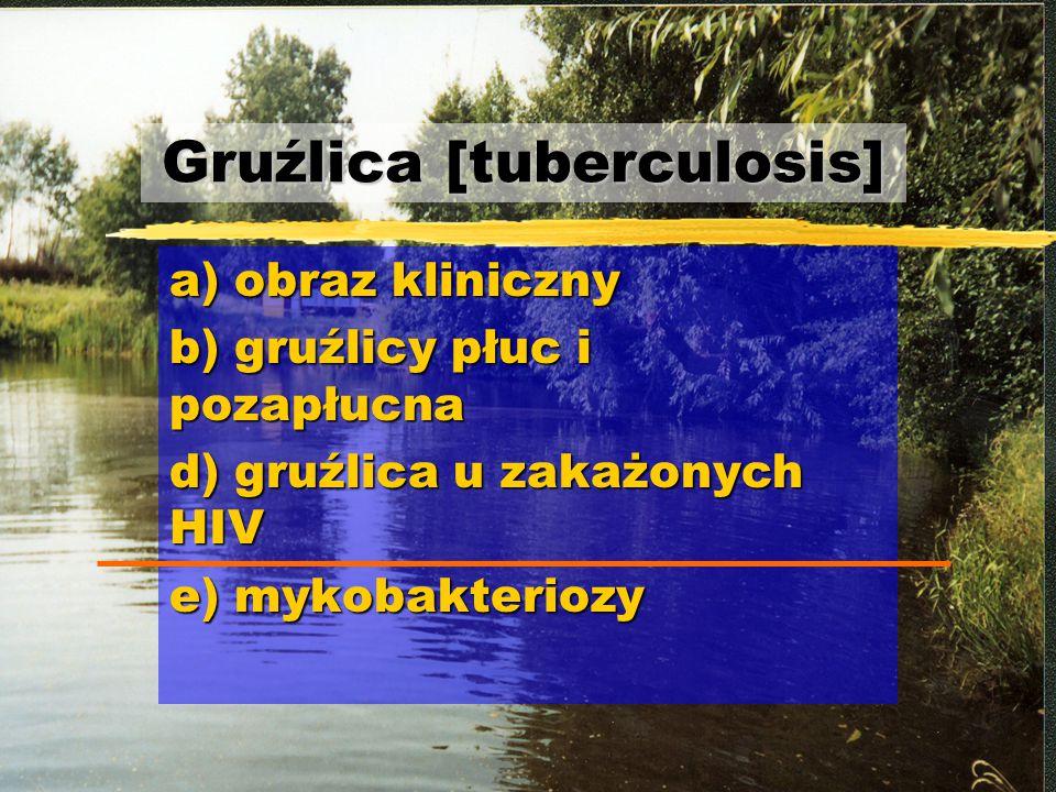 Gruźlica [tuberculosis]
